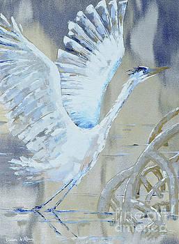 Blue take off by Paola Correa de Albury