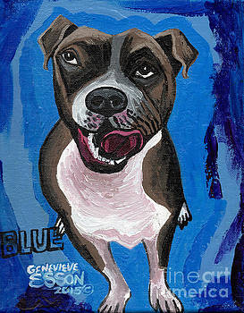 Genevieve Esson - Blue The Pit Bull Terrier