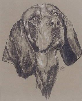 Barbara Keith - Blue Tick Coonhound