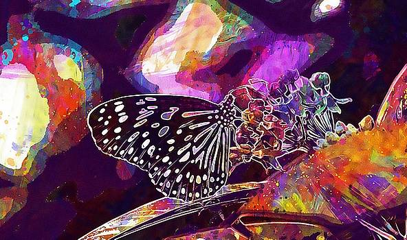 Blue Tiger Tirumala Hamata Butterfly  by PixBreak Art