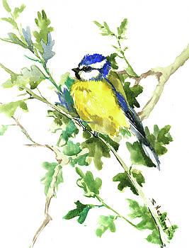 Blue Tit on Oak Tree by Suren Nersisyan