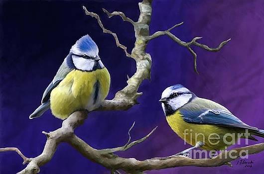 Blue Titmouse by Judy Filarecki