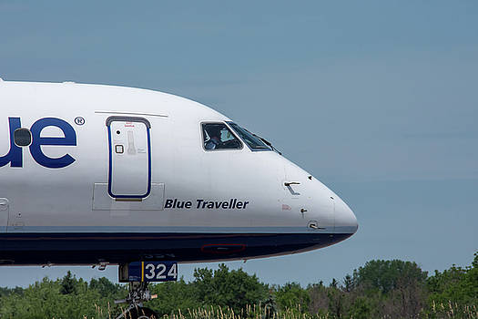 Blue Traveller by Guy Whiteley