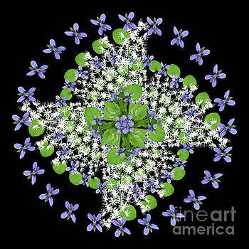 Blue Violet Galaxy by Karen Jordan Allen