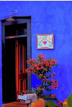 Blue Wall Red Door by Terry Medaris