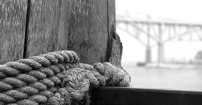 Blue Water Bridge Knot by Scott Heister