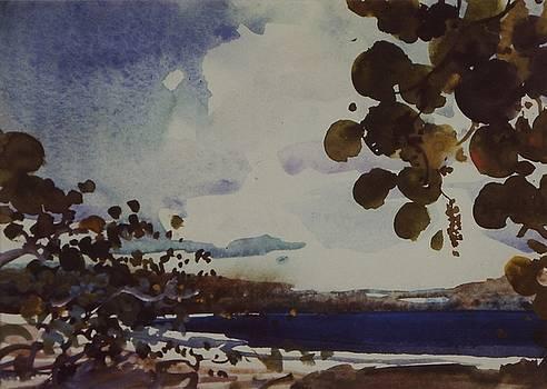 Blue Water by Charles Hawes