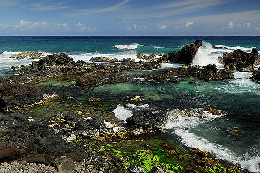 Reimar Gaertner - Blue wave and lava rock tide pools at Hookipa Beach Maui