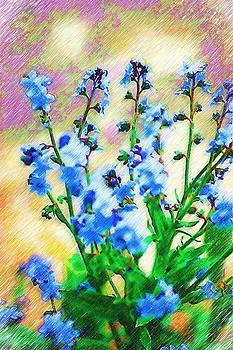 DONNA BENTLEY - Blue Wildflowers
