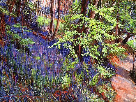 Blue Wildflowers Pathway by David Lloyd Glover
