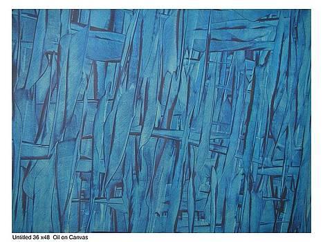 Blue Wings by Amit Kalla
