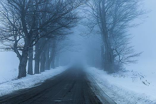 Blue Winter by Tim Kirchoff