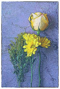 Blue Yellow # 2 by Dw Johnson