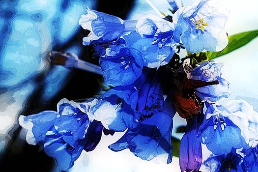 Bluebell 15 by Galen Puronen