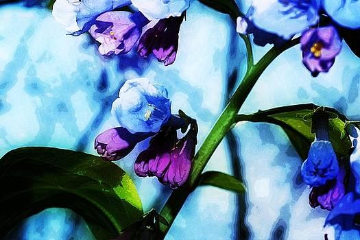Bluebell 16 by Galen Puronen