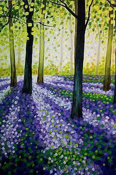 Bluebell Carpet by John  Nolan