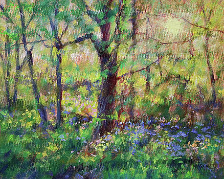 Bluebells at Sunset-Along the Roanoke River by Bonnie Mason