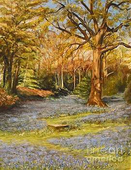 Bluebells by Beatrice Cloake