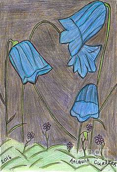 Bluebells in the Night by Amanda Currier
