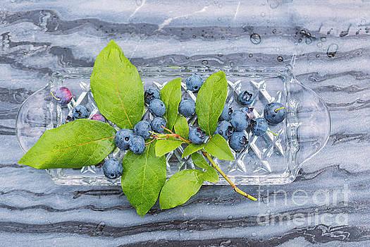 Sophie McAulay - Blueberries on marble bakground