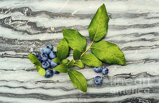 Sophie McAulay - Blueberries on marble