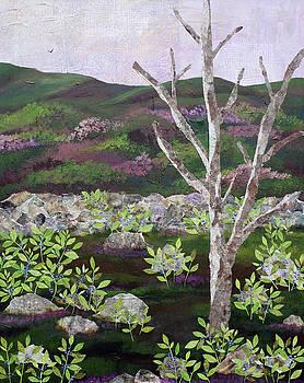 Blueberry Field and Tree 2 by Janyce Boynton