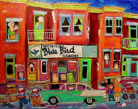 BlueBird Cleaners Wellington Point St. Charles by Michael Litvack