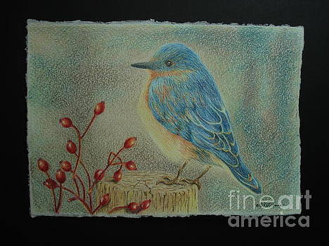 Bluebird of Happiness by Lisa Bliss Rush