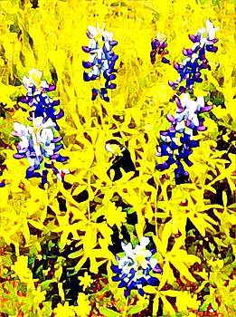 Bluebonnet abstract by Patricia Rex