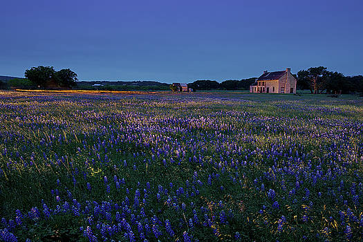 Bluebonnet House by George Gilchrist