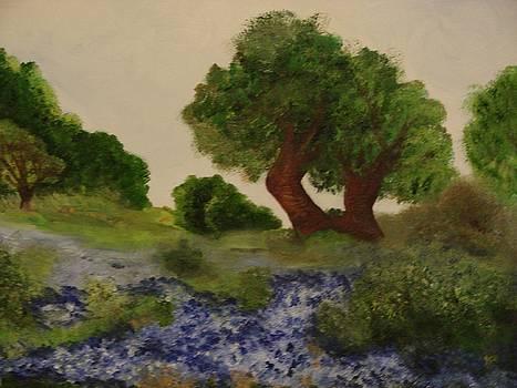Bluebonnet Way by Shiana Canatella