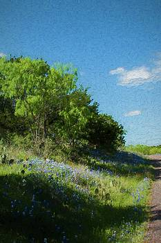 Bluebonnets along the road    5553 by Fritz Ozuna