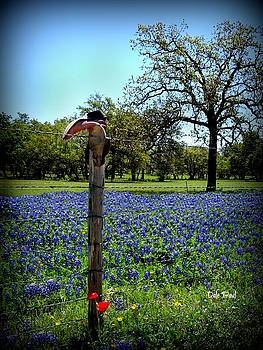 Bluebonnets and Boots by Dale Paul