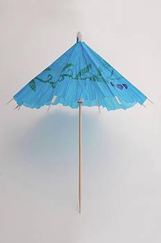 Bluebrella by Dan Holm