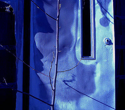 BlueDoor by Curt Curt