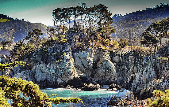 Bluefish Cove, Pt. Lobos by Jeri Sawall