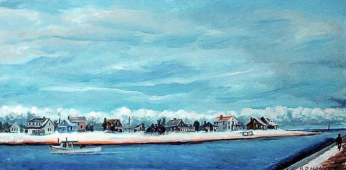 Bluefish Cove by Robert Harvey
