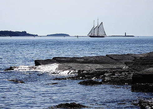Bluenose II in Halifax Harbour by Celtic Artist Angela Dawn MacKay