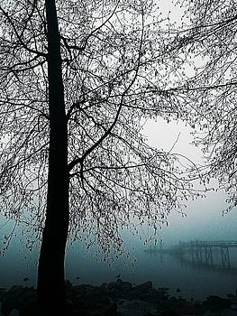 Bluest Fog by Lauren Williamson