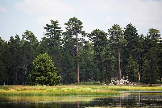 Bluff Lake CA Island 1 by Chris Brannen