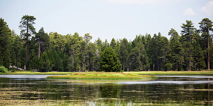 Bluff Lake CA Island 3 by Chris Brannen