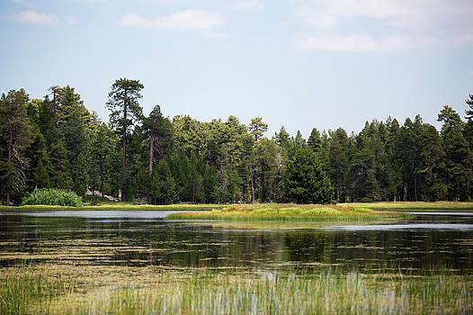 Bluff Lake CA Island 4 by Chris Brannen