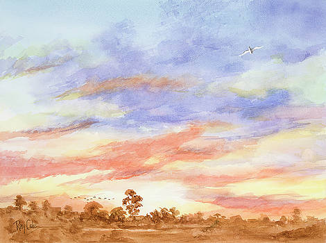 Sunset Over the Marsh by Ray Cole