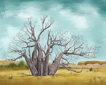 Boab Tree by Deborah Kolesar