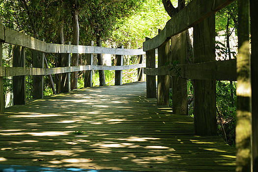 Boardwalk by Lester Plank
