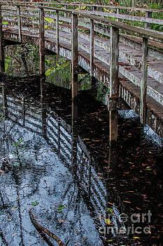 Boardwalk Reflection by John Greco