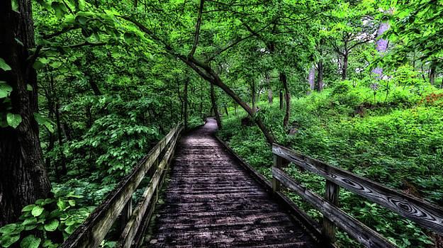 Boardwalk by Steve ODonnell