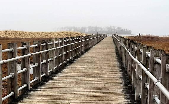 Boardwalk to Ocean by Stacie Fernandes