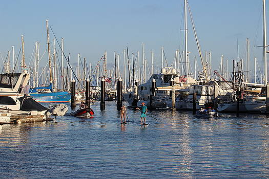 Gary Canant - Boat Aims at Paddleboarders