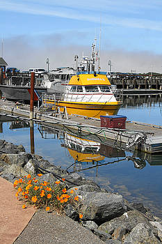 Boat Harbor at Bandon by Alice Eckmann